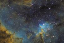 IC1805-SHO-09012014-P1