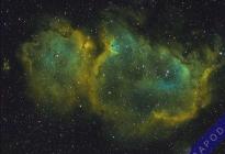IC1848SHO-02112011-AAPOD