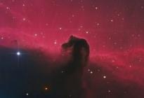 IC434-SHO-30122016-P1